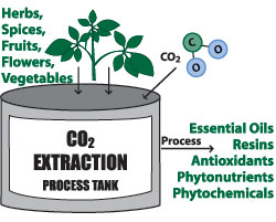 co2_extraction